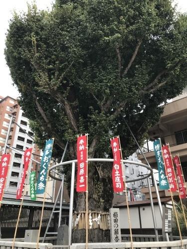 Hakata~Kitakyushu-1._c0153966_12275717.jpeg