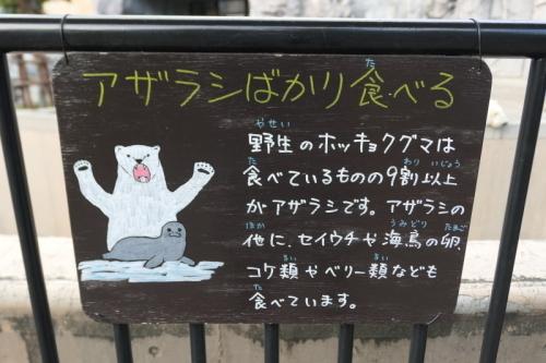 旭川旅行1日目後半:旭山動物園〜ホテル_f0369014_15404536.jpeg