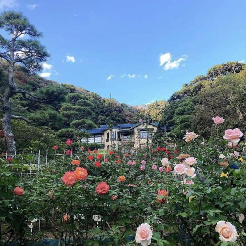 2021.10.22 鎌倉いいとこ。_a0145471_07204145.jpg