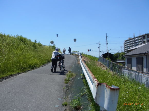 初夏の堤防道_b0002879_15490791.jpg