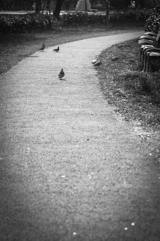 ~ 歩いた道 ~_f0080076_07413075.jpg