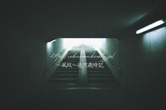 闇の向こう・・・。_f0235723_16160976.jpg