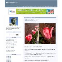 ブログを引っ越しました - 編集者Asanaoのブログ(旧)