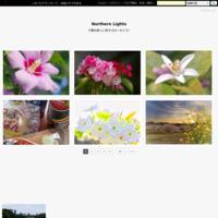 北海道と沖縄を味わう... - Northern Lights
