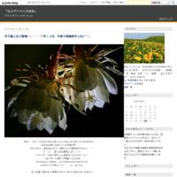 2018東北行(ログ0430)・・・小岩井農場の一本桜大成功♪そして宮古・浄土ヶ浜を目指す - 『私のデジタル写真眼』