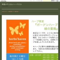 2018年2−4月 ハーブ教室@雨ノヒパン(奄美大島) - 英国メディカルハーバリスト