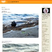 紅梅とアオサギ - ハチミツの海を渡る風の音