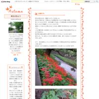 秋深まる - 埼玉の空より