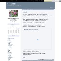 記録のために~2019年杏ジャム - hanaの花便り