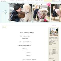 台風14号と豆台風襲来 - Toy Poodle ☆Ren&Cocoa