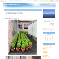 空の展望所の芝桜と空カフェ - 米水津(大分県佐伯市)観光ブログ