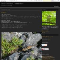 ファミリー - 村田ピアノ教室のブログ ~北海道旭川市より~