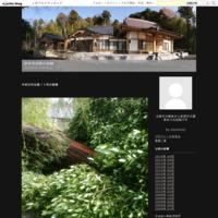 令和元年台風15号の被害 - 妙本寺改築の記録