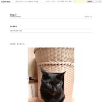 猫団子の季節 - 和みねこ*