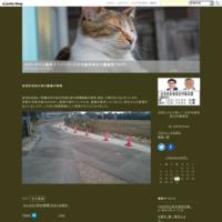 25日7時14分ころ、地震がありました - ながいきむら議員のつぶやき(日本共産党長生村議員団ブログ)