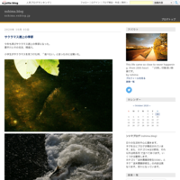 避けては通れない内容 - nshima.blog