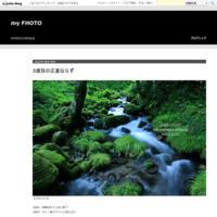 芝桜2019 - my FHOTO