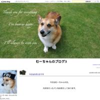 今日は5月1日です - むーちゃんのブログ3