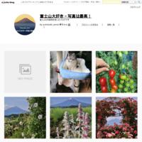 白い薔薇 - 富士山大好き~写真は最高!