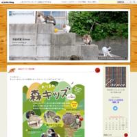 急募!3/5糸紡ぎワークショップ@naruco cafe - 手紡ぎ屋 Erinor