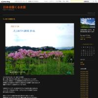 舞洲のネモフィラ - 日本全国くるま旅