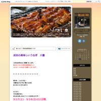 成田のイベント紹介♪ - 川豊本店ブログ