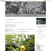 ミミ&コボの赤ちゃん - plant and animal