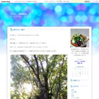 6月 - 木工雑貨 happy-house