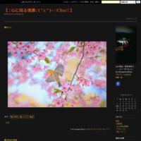 天満海食洞門のからの朝日 - 【♪心に残る情景♪(^ε^)-☆Chu!!】