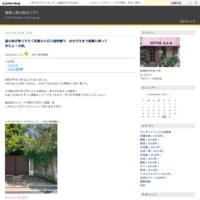 沖縄のお姉さんと台湾料理♪ - しっかり立って、希望の木