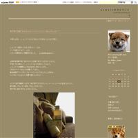 柴犬とかもめ【フォトムービーあり】 - yamatoのひとりごと