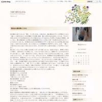 本「奴隷小説」桐野夏生 - うまうまひんひん