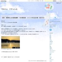 信州・長野県大町市春、農具川の岸辺の芝桜 - マルシェ ナチュレル