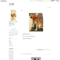 雑司ヶ谷 7/17手創り市 - 木工と柴犬