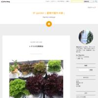 春菊、祝蕾を播種 - 3F garden(屋根付屋外水耕)