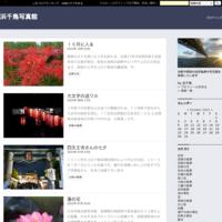 大阪ブルー色に変わる - 浜千鳥写真館