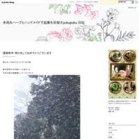 初ブログ! - さいたまの多肉&ハーブとハンドメイドPuku Mamu