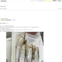 スルメイカの塩辛 - フクトナリ