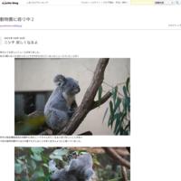 井の頭文化園の動物達 - 動物園に嵌り中2