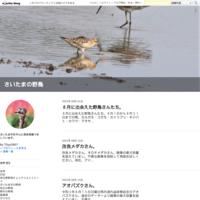 宍塚大池探鳥会は、中止になりました。 - さいたまの野鳥