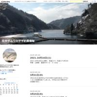 3月31日(水) - 佐仲ダムワカサギ釣果情報
