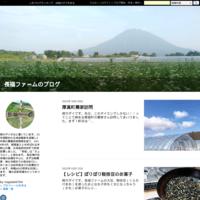ジャガイモあれこれ - 長福ファームのブログ