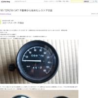 ブレーキその後~フロント編 - '85 TZR250 1KT 不動車から始めたレストア日誌