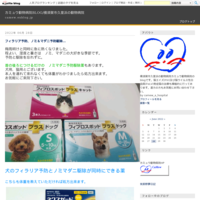 4月からの予防 - カミュウ動物病院BLOG/横須賀市久里浜の動物病院