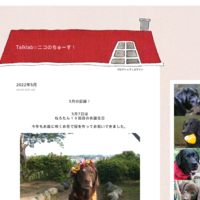 観る将・読む将 - Talklab☆ニコのちゅーす!