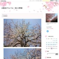 【昭和の京都のある1日】 - お散歩アルバム・・春めく日々