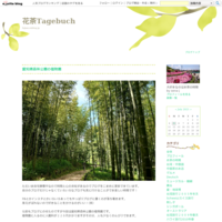 やさしい焼き菓子2月ベターホーム - 花茶Tagebuch