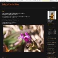 香取神社のお神楽 - Taka's    Photo Blog