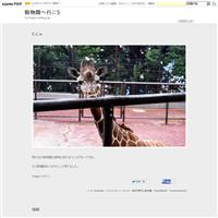 ジャンブイとツヨシ - 動物園へ行こう