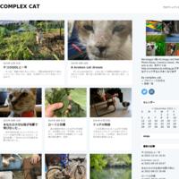 モララーウィーング - COMPLEX CAT